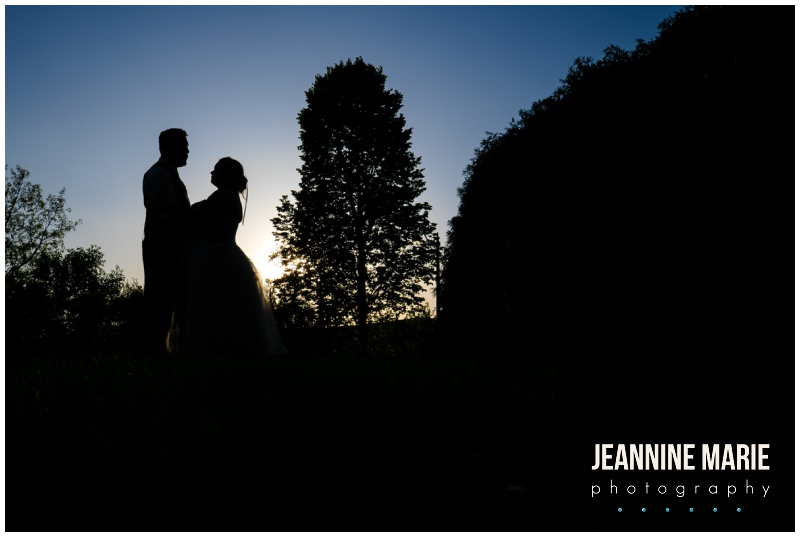 night portraits, wedding silhouettes, bride, groom, trees,Courtyards of Andover, Melanie T Moy, Unique Dining Experiences Catering, Buttercream, Instant Request DJ, Mirror Me Perfect, Minnesota Officiants, Amata Salon, Lindsay Dukes Photography, Raffine Bridal, David's Bridal, Men's Wearhouse, Jeannine Marie Photography, Minnesota wedding photographer, Minneapolis wedding photographer, Courtyards of Andover wedding photographer, wedding photography, Minnesota wedding photography, wedding photographers near me, best Minnesota wedding photography, intimate wedding, budget wedding, blush wedding, summer wedding, pink wedding, pink flowers, outdoor wedding ceremony, ballroom wedding, Minnesota wedding venues