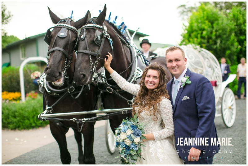 bride, groom, horses, horse drawn carriage, Cinderella carriage, Mystical Rose gardens, fairytale wedding, outdoor wedding, outdoor Wisconsin wedding venue, Cinderella wedding, blue wedding, greenery, Cinderella carriage, lace ballgown, Jeannine Marie Photography, Wisconsin wedding photographer, covid wedding, pandemic wedding, romantic wedding, Dorothy Ann Bakery, Men's Wearhouse, Bella Bridal boutique, Creative Catering by Molly, Anna May Flowers, Men's Wearhouse, JJ's House, Zazzle, James Allen, Wisconsin Bride, wedding inspiration, wedding planning
